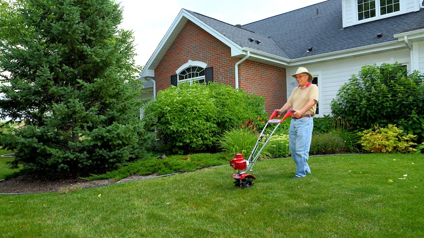 Ten Tips for a Great Lawn