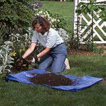 Healthier Soil!