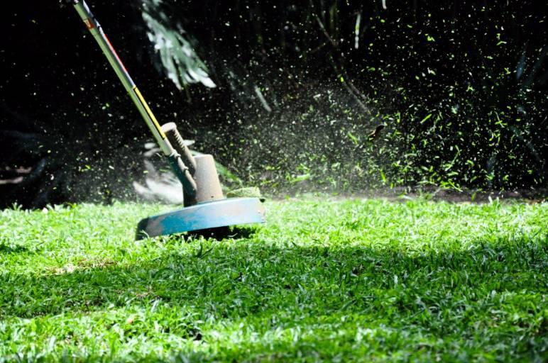 21 - grass trimmer - needs credit