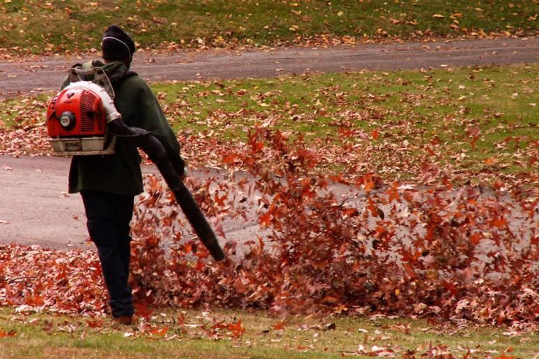 22 - leaf blower - public domain