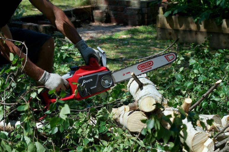 26 - chainsaw - (c) Mantis