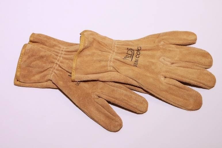 32 - gardening gloves - public domain