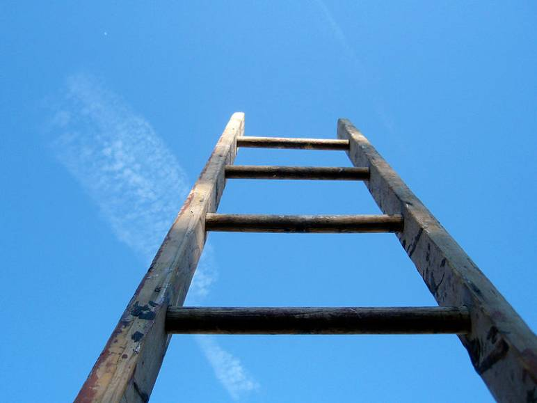 34 - ladders - needs credit