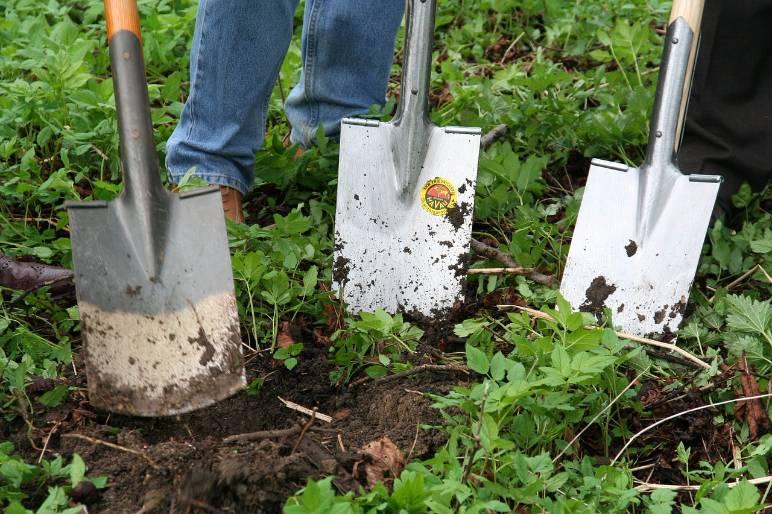 5 - shovels - public domain