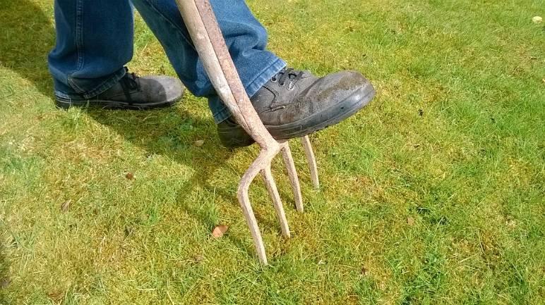 9 - garden fork - public domain