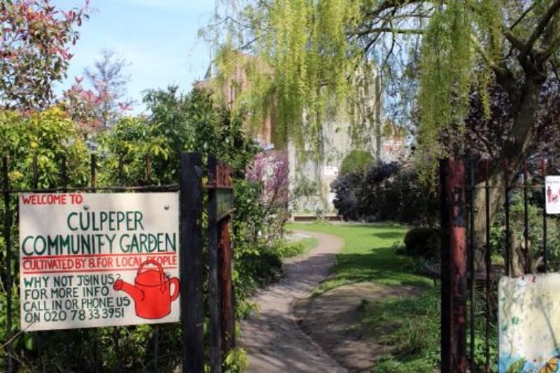 Culpeper Community Garden[1]