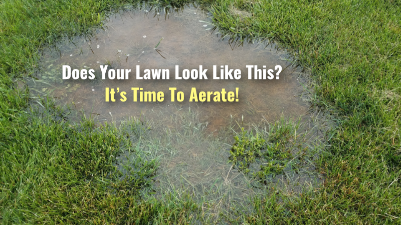 What are the advantages of lawn aeration