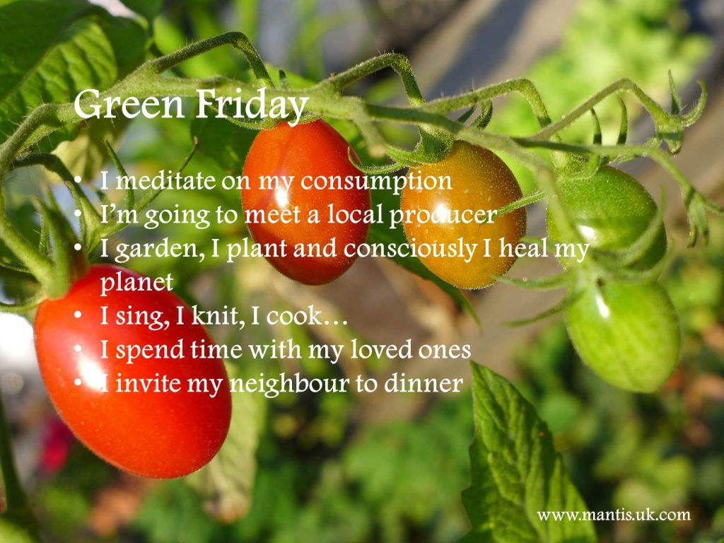 Black Friday – Green Friday