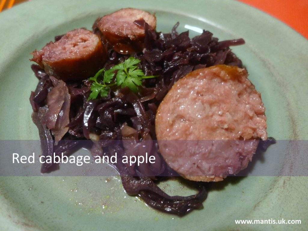 Red cabbage and apple with twist