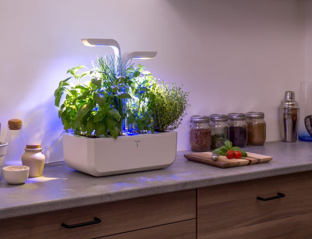 classic v ritable indoor garden. Black Bedroom Furniture Sets. Home Design Ideas