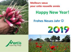 Happy New Year from yur Mantis Team