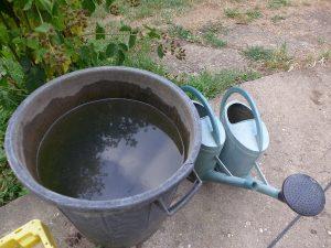 water management 2